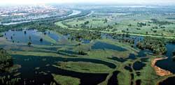 kopacki rit marshes