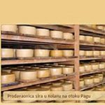 Cheese from Pag Island among the best in the world