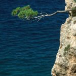 Croatia014Brela