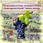 Grape and Wine Festival on Brac