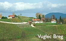 vuglec-breg-zagorje1