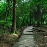 New Walking Trails on Plitvice Lakes